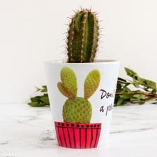 Plant Pot - Personalised Cactus