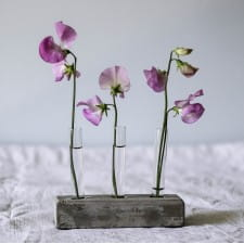 Test tube flower vase