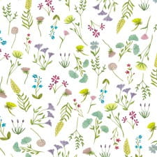 Spring flowers download